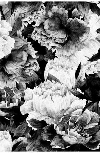 SassyChic Peel & Stick Wallpaper - Black & White Large Peonies